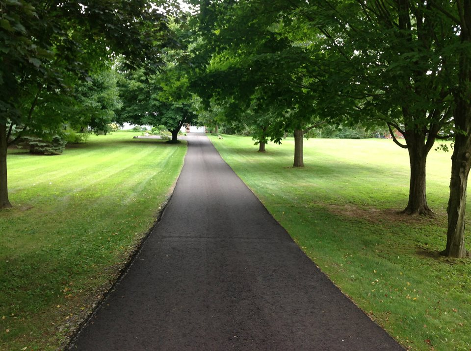 Lawn care services landscaping and lawn care for Lawn care professionals